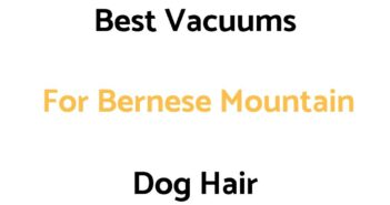 Best Vacuums For Bernese Mountain Dog Hair
