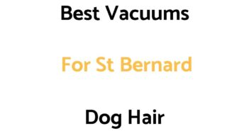 Best Vacuums For St Bernard Dog Hair