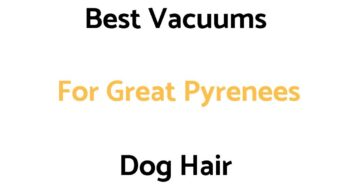 Best Vacuums For Great Pyrenees Dog Hair
