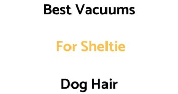 Best Vacuums For Sheltie Dog Hair