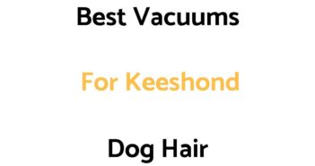 Best Vacuums For Keeshond Dog Hair