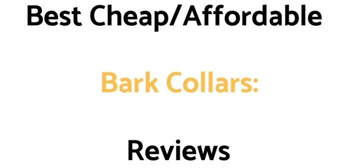 Best Cheap/Affordable Bark Collars: Reviews & Buyer's Guide