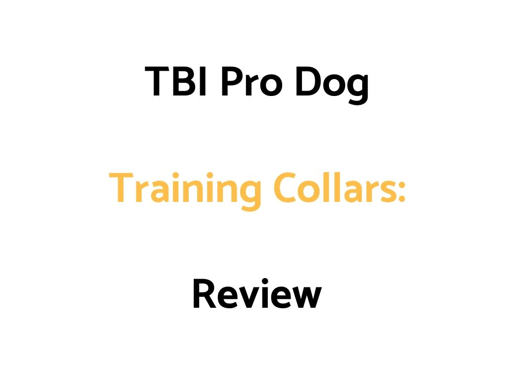 TBI Pro Dog Training Collars: Review