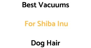 Best Vacuums For Shiba Inu Dog Hair