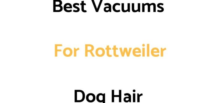 Best Vacuums For Rottweiler Dog Hair
