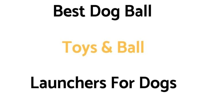 Best Dog Ball Toys & Ball Launchers For Dogs