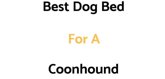 Best Dog Bed For A Coonhound: Top Beds, Reviews & Buyer's Guide