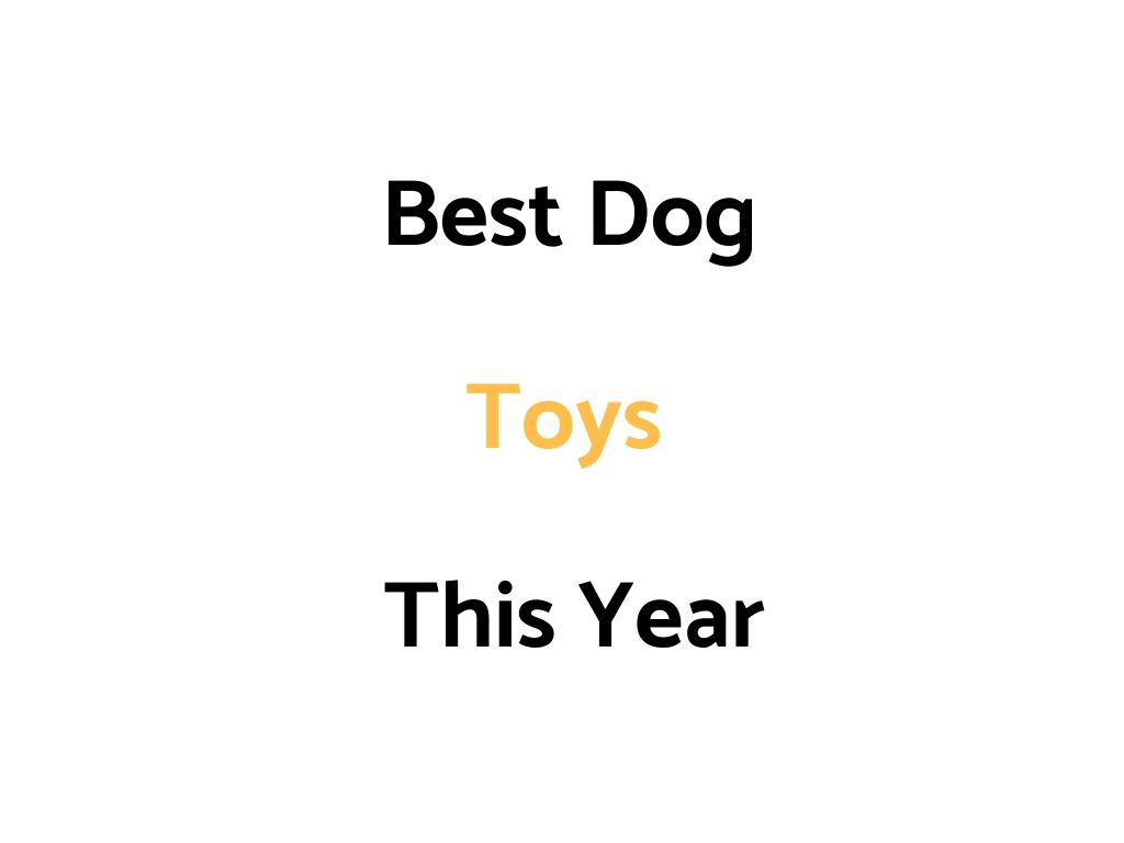Best Dog Toys For Dogs & Puppies