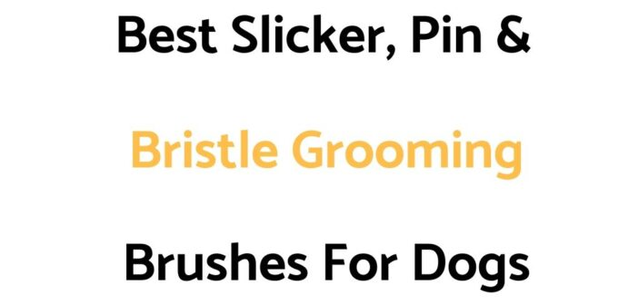 Best Slicker, Pin & Bristle Grooming Brushes For Dogs