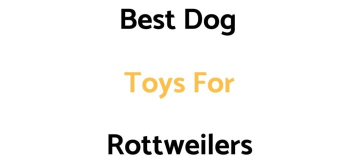 Best Dog Toys For Rottweilers