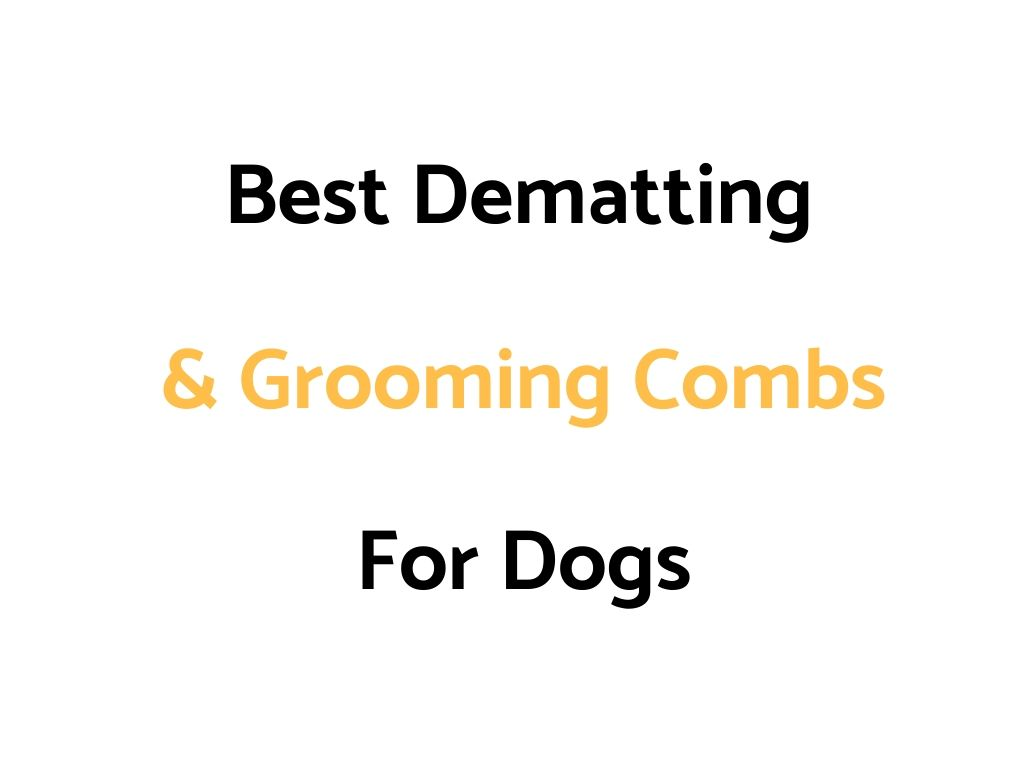 Best Dematting & Grooming Combs For Dogs
