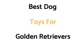 Best Dog Toys For Golden Retrievers