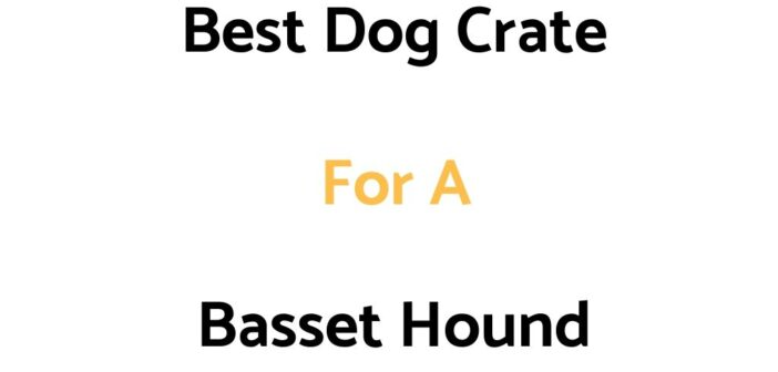 Best Dog Crate For A Basset Hound: Top Crates, & Buyer's Guide