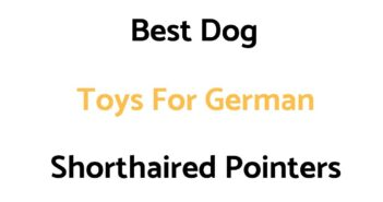 Best Dog Toys For German Shorthaired Pointers