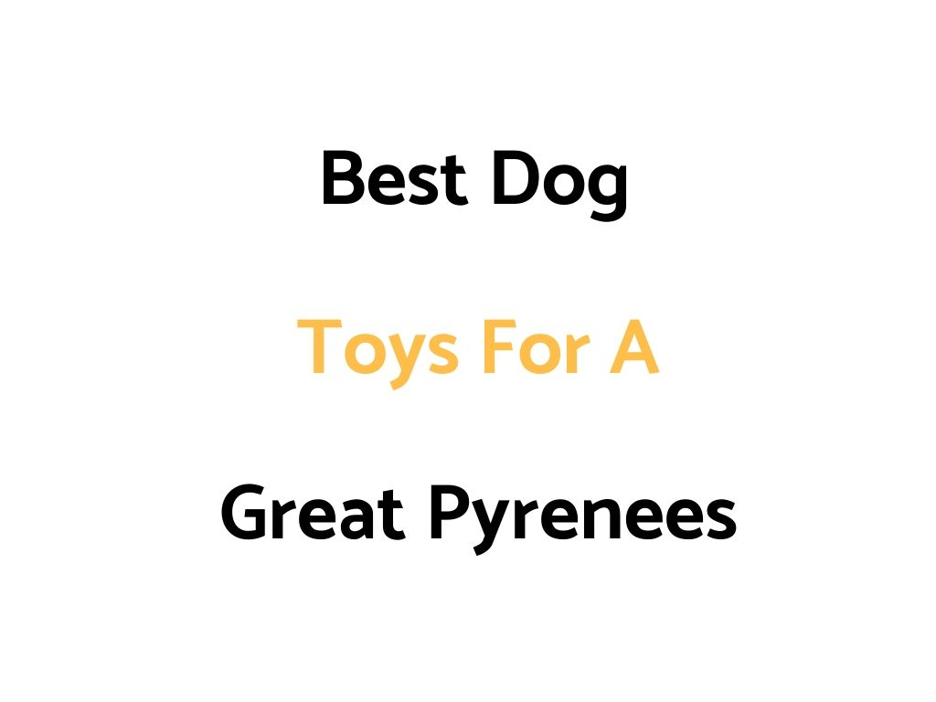 Best Dog Toys For A Great Pyrenees