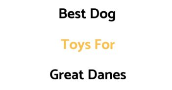 Best Dog Toys For Great Danes