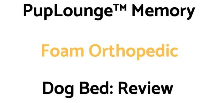PupLounge™ Memory Foam Orthopedic Dog Bed: Review, & Buyer's Guide