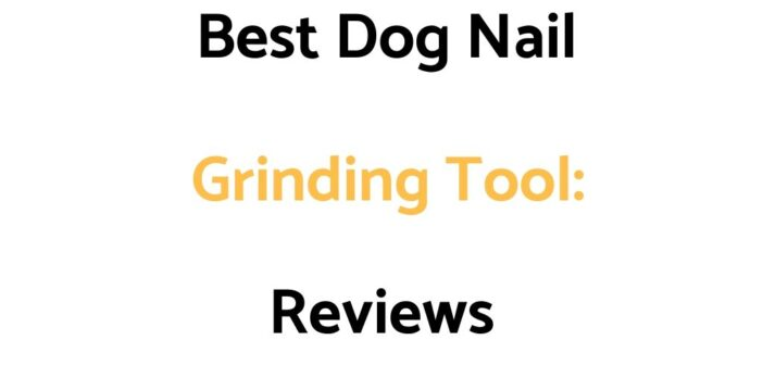 Best Dog Nail Grinding Tool: Reviews, & Buyer's Guide