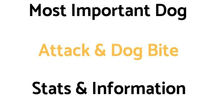 Most Important Dog Attack & Dog Bite Stats & Information To Know