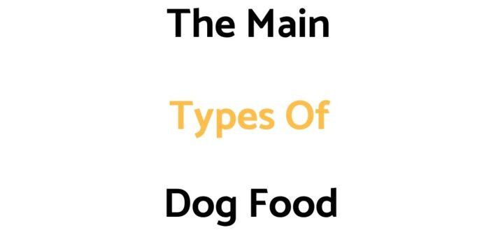 The 7 Main Types Of Dog Food