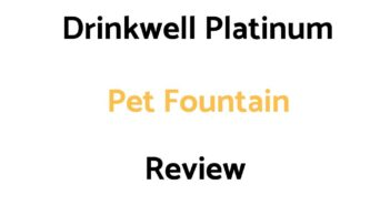 Drinkwell Platinum Pet Fountain Review