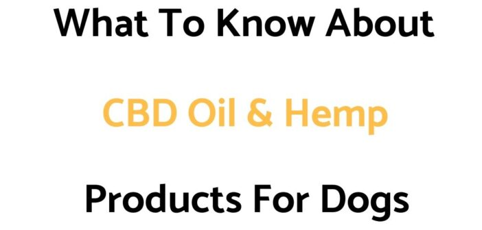 What To Know About CBD Oil & Hemp Products For Dogs (An Introduction Guide)