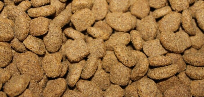 Ways The Dog/Pet Food Industry Might Improve Safety, Quality & It's Transparency