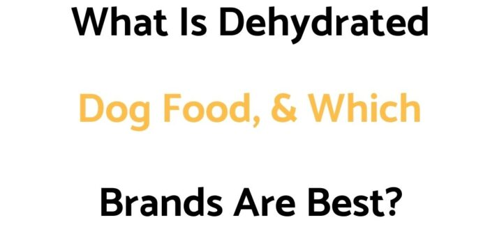 What Is Dehydrated Dog Food, & Which Brands Are Best?