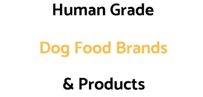 Popular Human Grade Dog Food Brands
