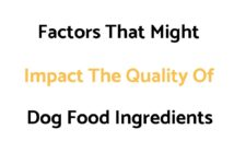 Common Factors That Might Impact The Quality Of Ingredients In Dog Food