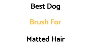 Best Dog Brush For Matted Hair: Top Rated List