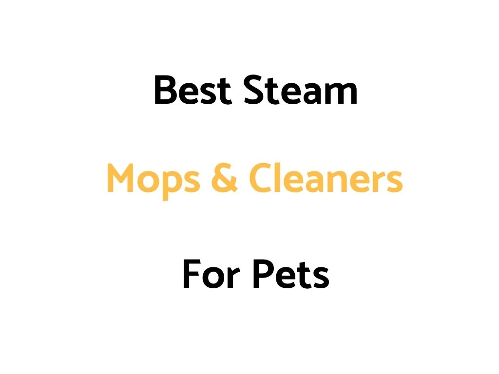 Best Steam Mops & Cleaners For Pets: Top Rated, Reviews & Comparisons
