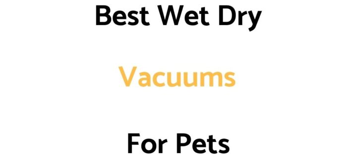Best Wet Dry Vacuums For Pets: Reviews, & Top Rated