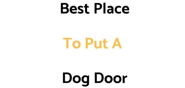 Best Place To Put A Dog Door